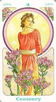 Bach Divination Cards, Tarot Cards, Astro Tarot, Bach Flowers, Star Of Bethlehem, Catholic Art, Flower Cards, Flower Power, Illustration