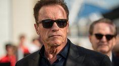 Coronavirus: Arnold Schwarzenegger enlists donkey and pony for PSA - Furious Movie, The Furious, Actor Idris, Idris Elba, The Donkey, Tough Guy, Tom Hanks, Arnold Schwarzenegger, Profile Photo