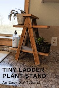 Tiny Ladder Plant Stand – My Happy Simple Living Small ladder plant stand diy tutorial. This easy diy ladder plant stand tutorial is simple and great for anyone with wood scraps to use up. Wood Projects For Beginners, Scrap Wood Projects, Easy Woodworking Projects, Easy Small Wood Projects, Best Diy Projects, Woodworking Tools, Diy Projects Out Of Pallets, Diy Crafts With Wood, Diy Outdoor Wood Projects