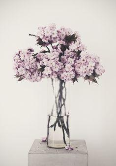 De kleur van de bloemen zijn erg mooi en de vaas is ook stijlvol