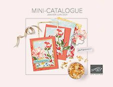 PDF du mini-catalogue janvier-juin 2021 Fun Fold Cards, Folded Cards, Cube Photo, Le Gui, Stampin Up, Waterfall Cards, White Gel Pen, Shades Of Gold, Special Birthday