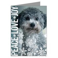 Animal Legal Defense Fund Peace Love Joy Holiday Cards - 20 for $28.99
