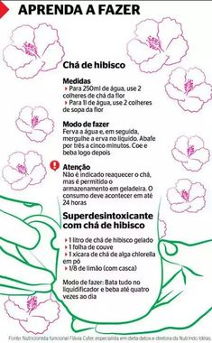 Preparação do chá de hibisco Healthy Lifestyle Tips, Healthy Tips, Healthy Recipes, Mind Body Soul, Detox Recipes, Wellness Tips, Herbal Medicine, Cocktail Drinks, Stress Less