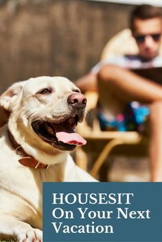 Housesit on Your Next Vacation   Affordable Vacation Ideas   Cheap Vacation Hacks   Pet Sitting Jobs   How To Save Money On Travel   Top Travel Tips   Expert Travel Advice