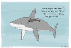 Awesome shark cartoon!! BFF  © Liz Climo