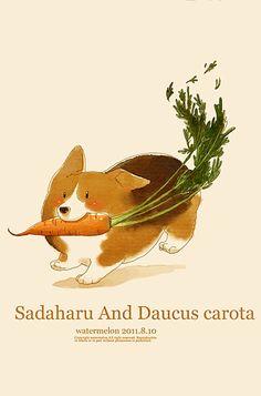 carrot Corgi