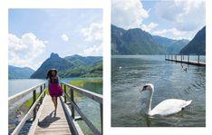Traunsee Salzkammergut Oberösterreich Salzburg, Hallstatt, Seen, Most Beautiful Pictures, In The Heights, Cool Photos, Mountains, Travel, Animals