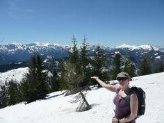 Unser neues Wanderangebot im Zeller Land. Mount Rainier, Mountains, Nature, Travel, Mountain Climbing, Hiking, Naturaleza, Viajes, Destinations