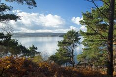 Owned by the National Trust, Brownsea Island stands in Poole Harbour and, today, is famed for its wonderful wildlife. But, in 1907, it was the site of a brand-new camp for young men set up by Robert Baden-Powell, which led to the formation of the Boy Scout Movement.