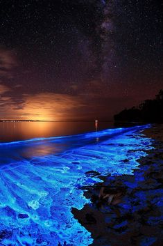 Magical Earth ~ Bioluminescent Dinoflagellate (noctiluca scintillans), at Jervis Bay, NSW, Australia Beautiful Nature Wallpaper, Beautiful Landscapes, Landscape Photography, Nature Photography, Photography Beach, Sea Of Stars, Fantasy Landscape, Nature Pictures, Amazing Nature