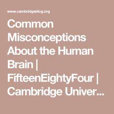 Common Misconceptions About the Human Brain   FifteenEightyFour   Cambridge University Press