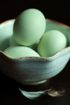 Araucana eggs - One Vanilla Bean Leek Quiche, Green Eggs, Blue Eggs, World Of Color, Chickens Backyard, Sea Foam, Shades Of Green, My Favorite Color, Mint Green