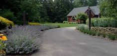 Ideas for Driveway Design: Articles, tips & photos of residential driveways