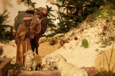 Europe's larges indoor Nativity scene - Vörs The arrangement of a Nativity scene in Vörs is a living tradition dating back more than half a century. The first crib in the Roman Catholic church in the. Roman Catholic, Hungary, Budapest, Scene, Animals, Animales, Animaux, Animais, Animal