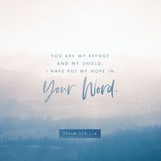 You are my refuge and my shield; I have put my hope in your word.