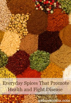 Everyday spices that promote health and fight disease - nature mom's blog