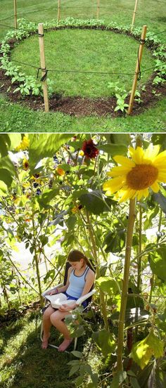 Grow a ... SUNFLOWER FORT  this summer for the kids to play in. WHIMSICAL !  See this and MANY more ideas... Click >>>
