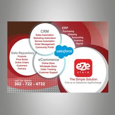 eZe Store Flyer for Dreamforce conference by twinartdesign