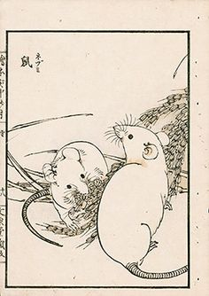 Kono Bairei Moon in the Country Prints 1889 Chinese Artwork, Japanese Artwork, Japanese Prints, Chinese Astrology, Chinese Zodiac, Japanese Bird, Flower Sketches, Ga In, Dragon Art
