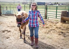 Training a Heifer to Become your Family Milk Cow: A Few Simple Guidelines