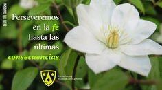 Jardín de Dios. Carmelitas.org