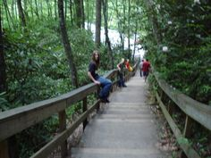 """In Gatlinburg traveling down on a trail from a waterfall, my 16 year old son decides to """"FLIP"""" over this railing moments after I snapped his picture sitting on this railing and warning him to get off of it! It was very awkward not to mention hilarious! // cathy M. #TheWayWayBack #PinToWin"""