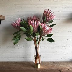 king mink protea . photo by camelback flowershop