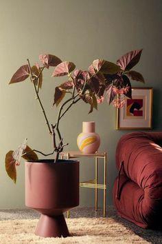 Des couleurs chaudes en camaïeu inspirées des collections de mode : du blush poudré jusqu'au pourpre lie de vin en passant par des terracottas sensuels.