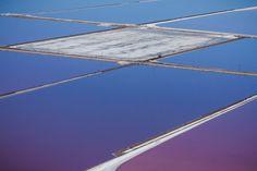 Purple Views of the San Francisco Bay Salt Ponds by Julieanne Kost ...