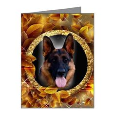 German shepherd i will live and die card german shepherd note cards pk of 20 german shepherdsnote cardsgreeting m4hsunfo