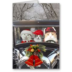 Christmas Cats in Car. Customizable funny Christmas greeting card