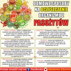 Domowe sposoby na oczyszczanie organizmu z pasożytów Nutrition, Traditional Chinese Medicine, Slow Food, Health Advice, Natural Medicine, Good Advice, Good To Know, Natural Health, Health And Beauty
