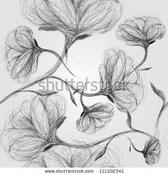 Wild Dog Rose / Seamless Black-And-White Pattern Ilustración vectorial en stock 111102341 : Shutterstock