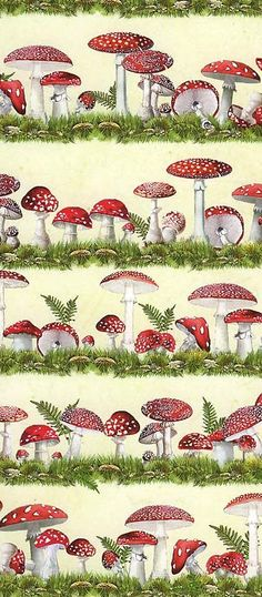 Mushroom crafting paper made in Germany