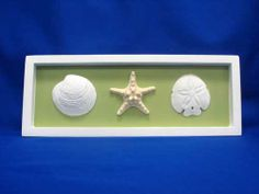 This could be a cute memento idea... find a couple seashells on the beach where you are married and frame them... maybe have a pic of you two on your wedding day inbetween them instead of the starfish in this pic... Shadowbox.... Have a teal Background? Eh?