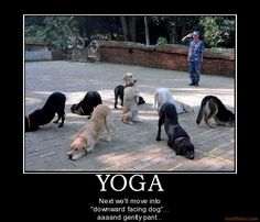 """""""Next we'll move into Downward Facing Dog...aaand gently pant."""""""