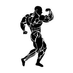 bodybuilding, vector Graphics bodybuilding, vector by Sunshine