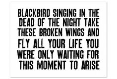 Blackbird - one of my favorite Beatles songs
