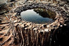 Landart -  rooted water by Ichi Ikeda