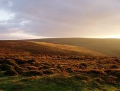 Quantock Hills AONB, beautiful and surprising place