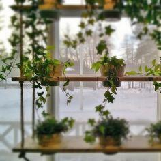 Päiväkaffeella #Lottamuseo - tottahan bongasin uuden  DIY -projektin:kukkakeinulauta.