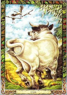 Bull  | The Druid Animal Oracle by Stephanie and Phillip Carr | Meaning: wealth, potency and beneficence | Reversed: it means difficulties in getting motivated or lack of sensitivity to others' needs (like a bull in a china shop).