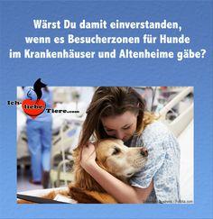 Wärst Du damit einverstanden, wenn es Besucherzonen für Hunde im Krankenhäuser und Altenheime gäbe? >> http://www.ich-liebe-tiere.com/ <<