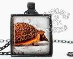 Hedgehog Necklace - Animal Jewelry Botanical Illustration by Crumb & Bone #crumbandbone #hedgehog #funjewelry
