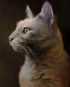"Jennifer Gennari on Instagram: ""Light yellow Tabby in some nice ambient light 🐾🌟 #catsoftheworld #catsoftheday #cats_of_instagram #contemporaryart #creativeuprising…"""