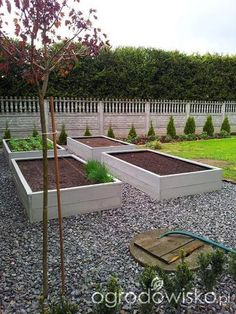 Warzywa uprawiane w skrzyniach, pojemnikach - strona 40 - Forum ogrodnicze - Ogrodowisko Garden Boxes, Vegetable Garden, Raised Garden Beds, Garden Projects, Garden Landscaping, Garden Design, Backyard, Gardens, Diy Art