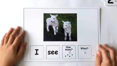 Farm Animals Activity - Building Sentences - Wonderful theme packet to cover ma. - Farm Animals Activity – Building Sentences – Wonderful theme packet to cover math and reading a - Animal Activities For Kids, Toddler Learning Activities, Speech Therapy Activities, Language Activities, Preschool Activities, Farm Animals Preschool, Special Education Activities, Communication Activities, Cognitive Activities