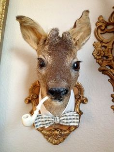 That's Mr Pearl To You Vintage French Taxidermy by OnceAgainLoved, $345.99. This creative lady is awesome!!!