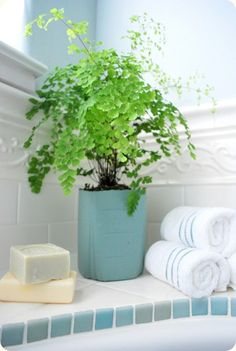 Never thought of using a bathroom wastebasket as a planter.  So easy and would add flair to a planter.