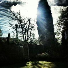 Garden HD